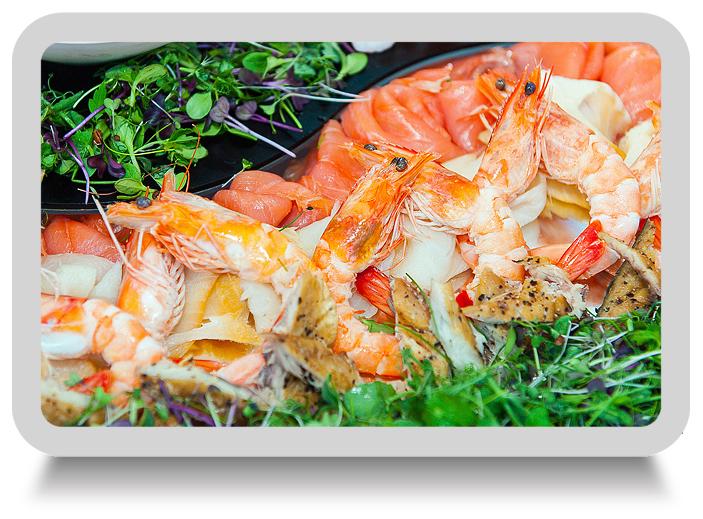 food_photography